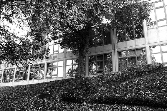 """Workshop """"Ulmer Beziehungen"""" mit Ralph Fischer an der HfG Ulm (19.10.19)"""